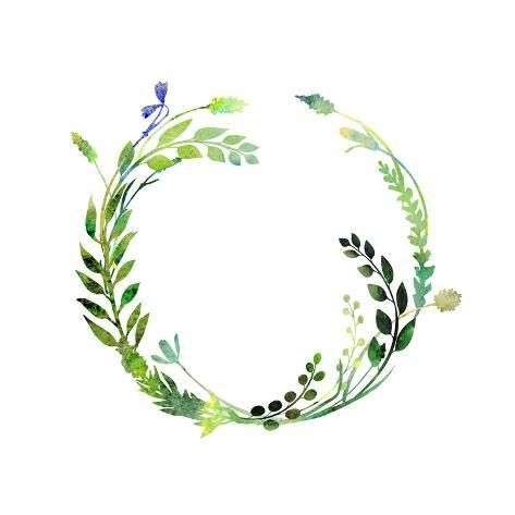Photo of A Watercolor Wreath Made of Field Meadow Herbs,Plants,Twigs;A Hand Painted Illustration; a Green Ro Art Print by Nechayka   Art.com