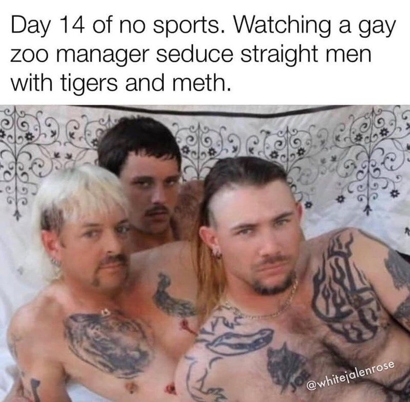 Twenty-Eight Memes From 'Tiger King,' Our New Favorite Show - Memebase - Funny Memes