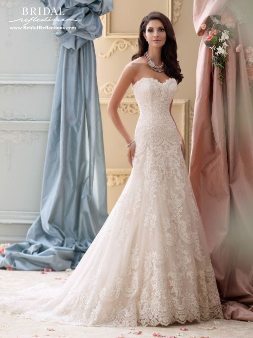 David Tutera for Mon Cheri Wedding Dress and Bridal Gown Collection ...