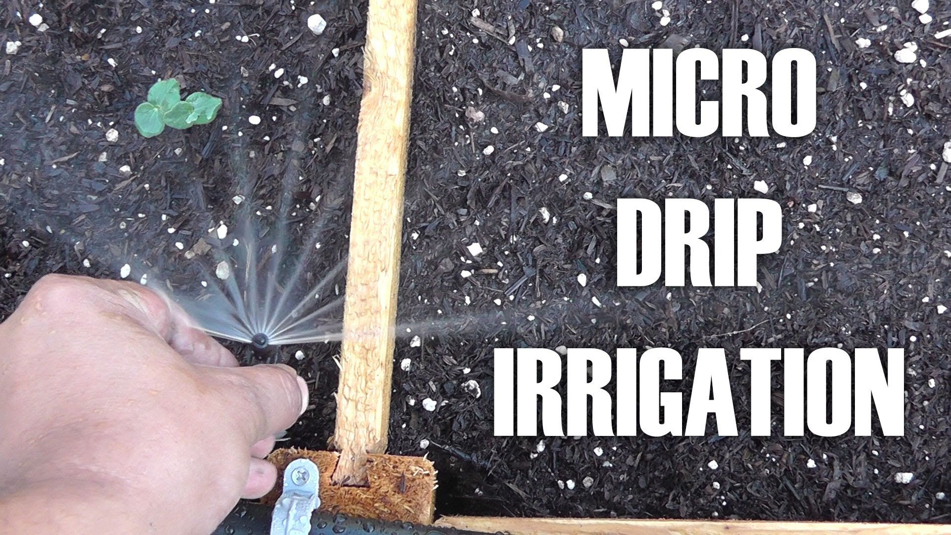 Micro Sprinklers For Raised Beds