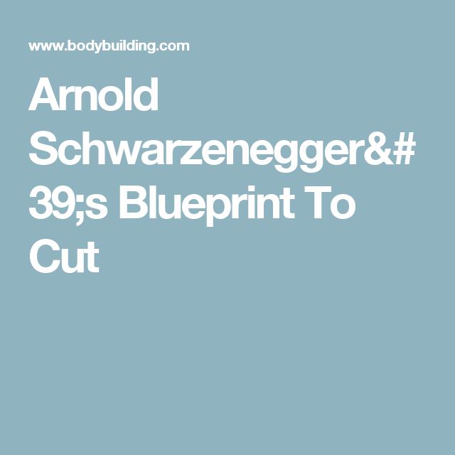Arnold schwarzeneggers blueprint to cut pinterest arnold arnold schwarzeneggers blueprint to cut malvernweather Gallery