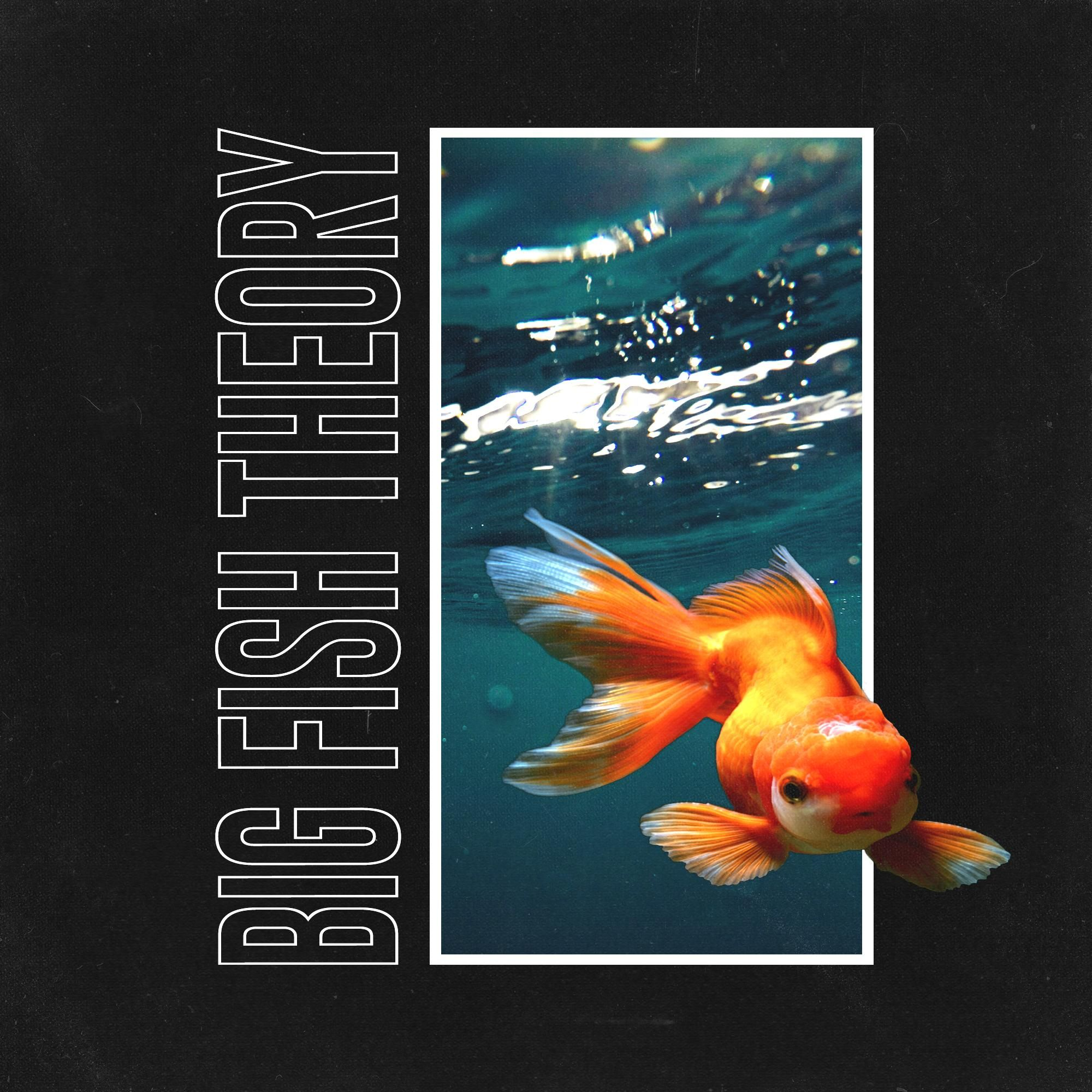 Vince Staples Big Fish Theory Album Cover Design Vince Staples Cover Art Design