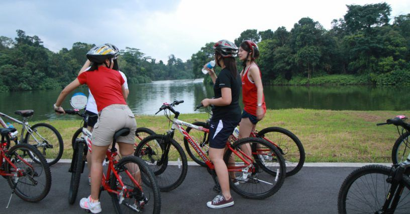 Lease a fantastic street bicycle and experience the best