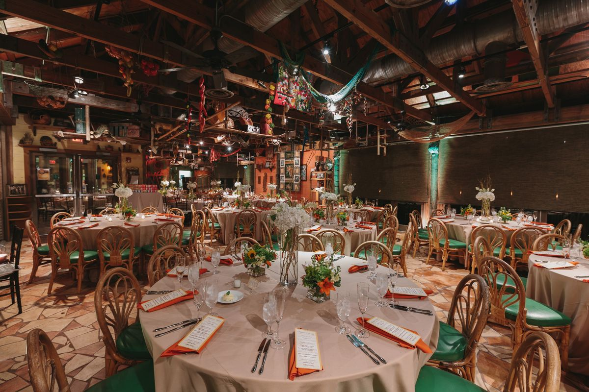 Elegant Palm Beach Zoo Wedding | West palm beach wedding ...