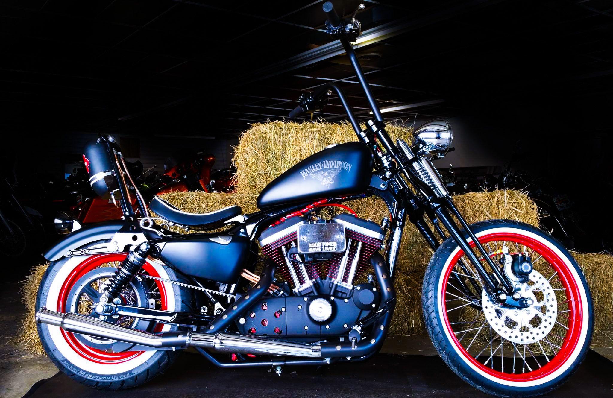 Zylstra Harley-Davidson Ames, Iowa - 2016 H-D® Sportster Iron 883