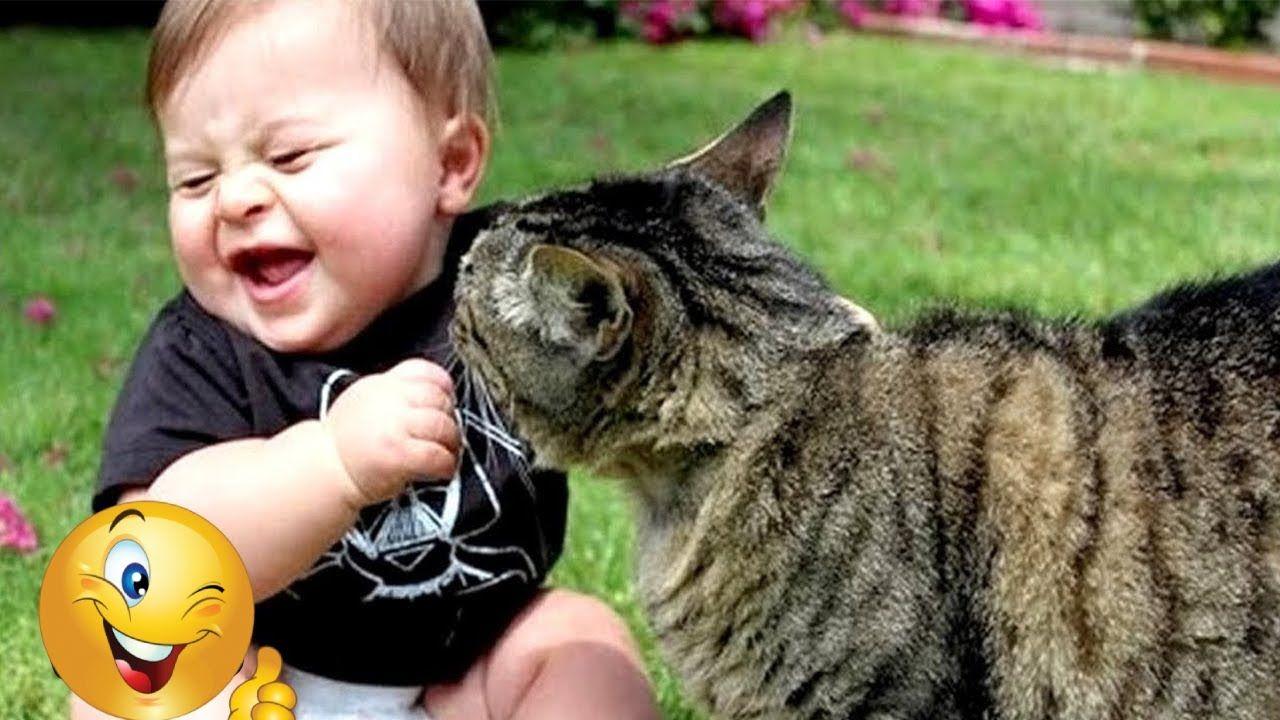 مقاطع مضحكة قطط جدا اجمل 10 مقاطع مضحكة للقطط مع الاطفال لأول مرة قط Funny Babies Cat Fails Cat Memes