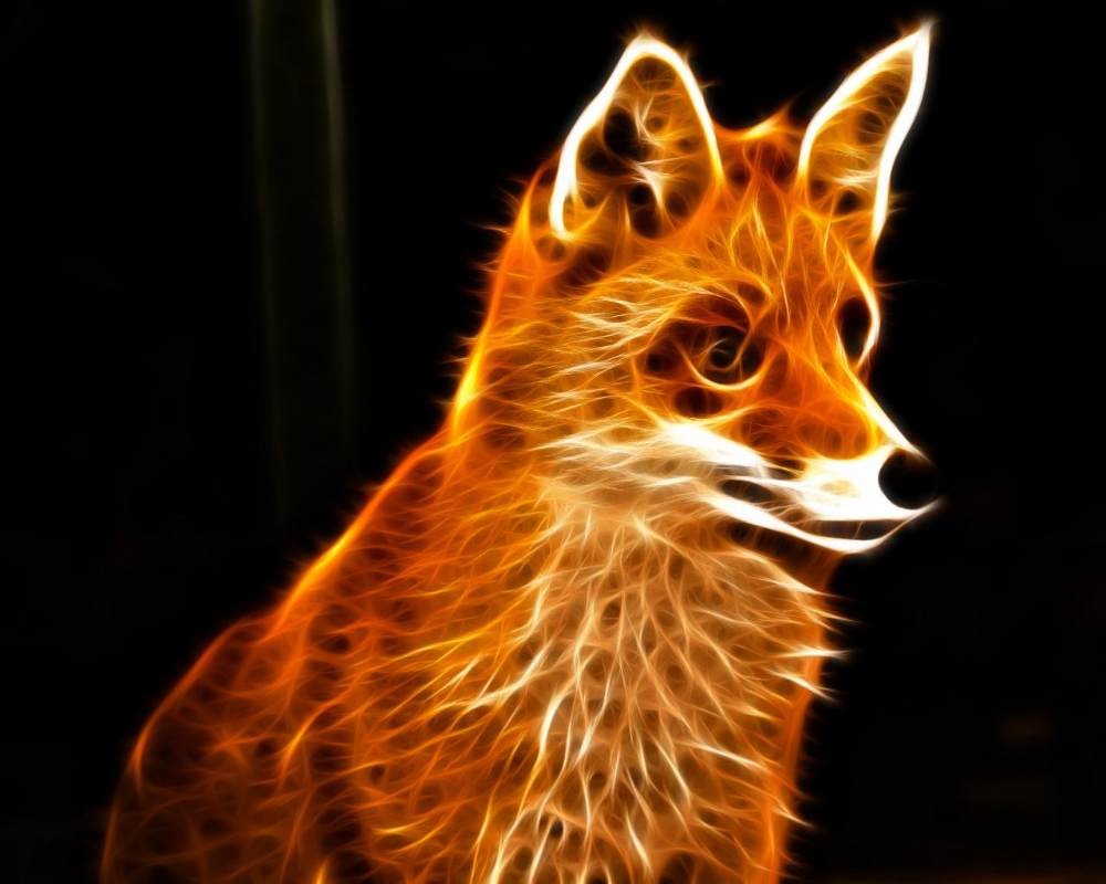 Orange Fox Logo Wallpaper