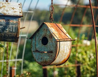 Bird house | Australia| Over the Garden Wall| Mothers Day Gift| Gift ...
