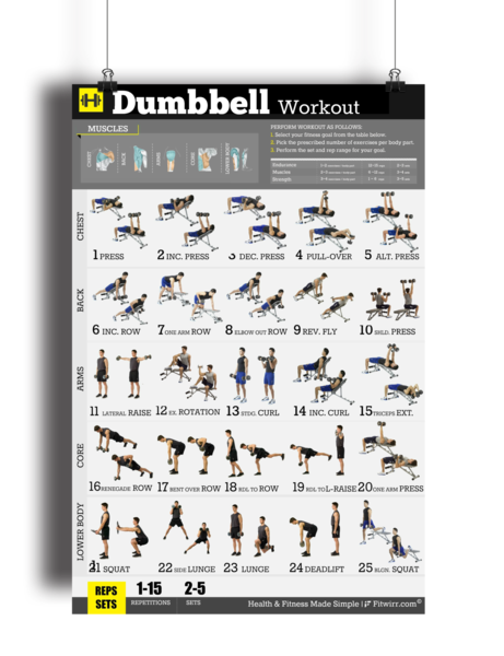 Dumbbell Exercise Workout Poster - Laminated - 18x24 #dumbbellexercises