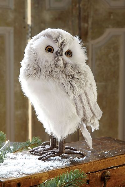 Great White Owl Have A Little Fun Creating Northern European Woodland Scene On Your Table
