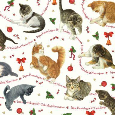 Fijne Feestdagen Gelukkig Nieuwjaar Katten Kerst Kaarten