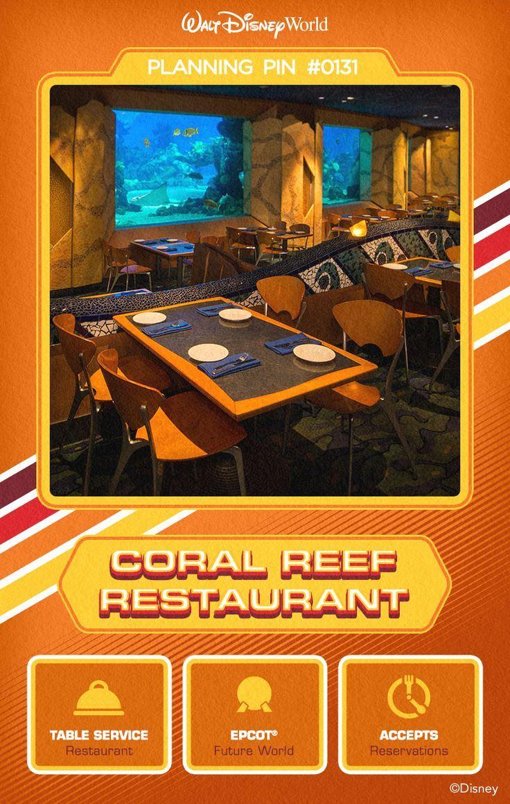 Pretty!! Coral Reef Fish