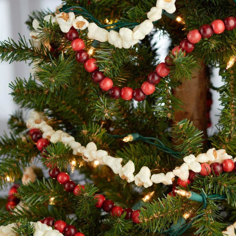 Addobbi Natalizi Economici.Addobbi Natalizi Commestibili Con I Popcorn Idee Economiche Fai Da Te Idee Di Viaggio Addobbi Per L Albero Ghirlande Di Natale