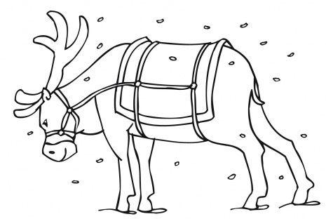 Santa S Reindeer Coloring Page Super Coloring Animal Coloring Pages Coloring Pages Coloring Pages For Kids