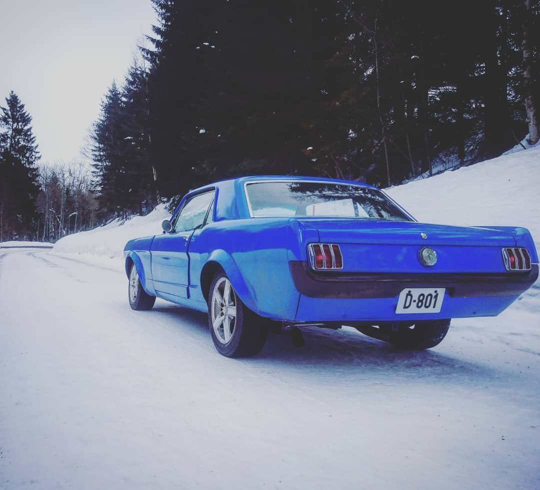 Muscle Car On Snow Oh Yeah Notraction Skinnytires Mustang