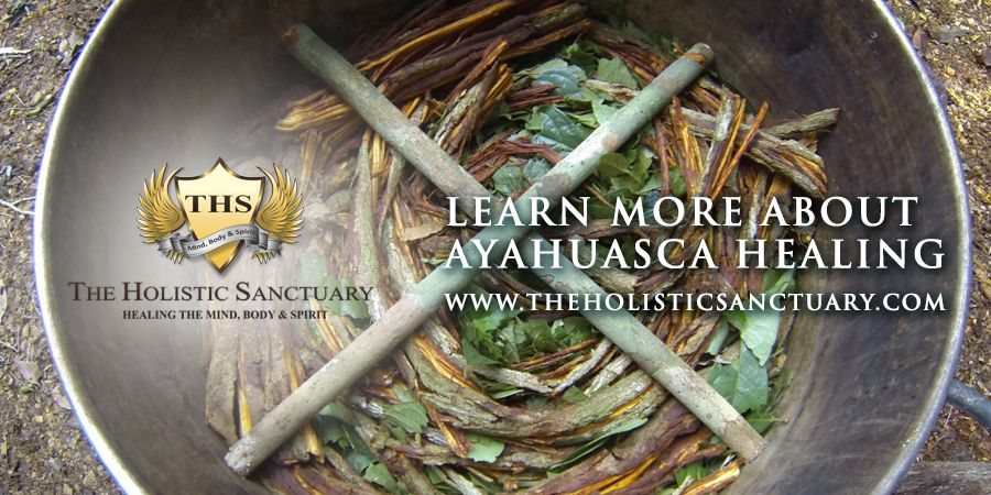 Ayahuasca is a Powerful psychoactive tea from the jungles of Peru, Brazil and other indigenous rain forests of South America. This powerful tea is infused with what holistic healers and shamans claim to be the answer for incurable mystery illnesses and also the lost connection we have with our spirit and soul. http://goo.gl/4j0qnS