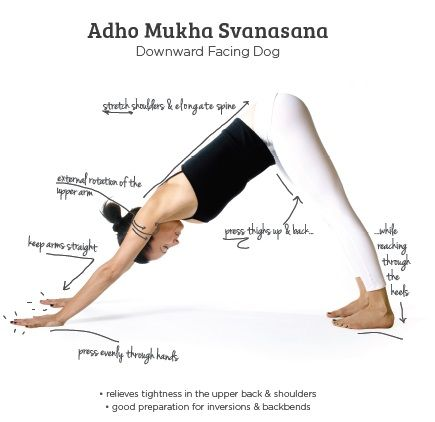 adho mukha savasana  yoga works yoga body downward dog