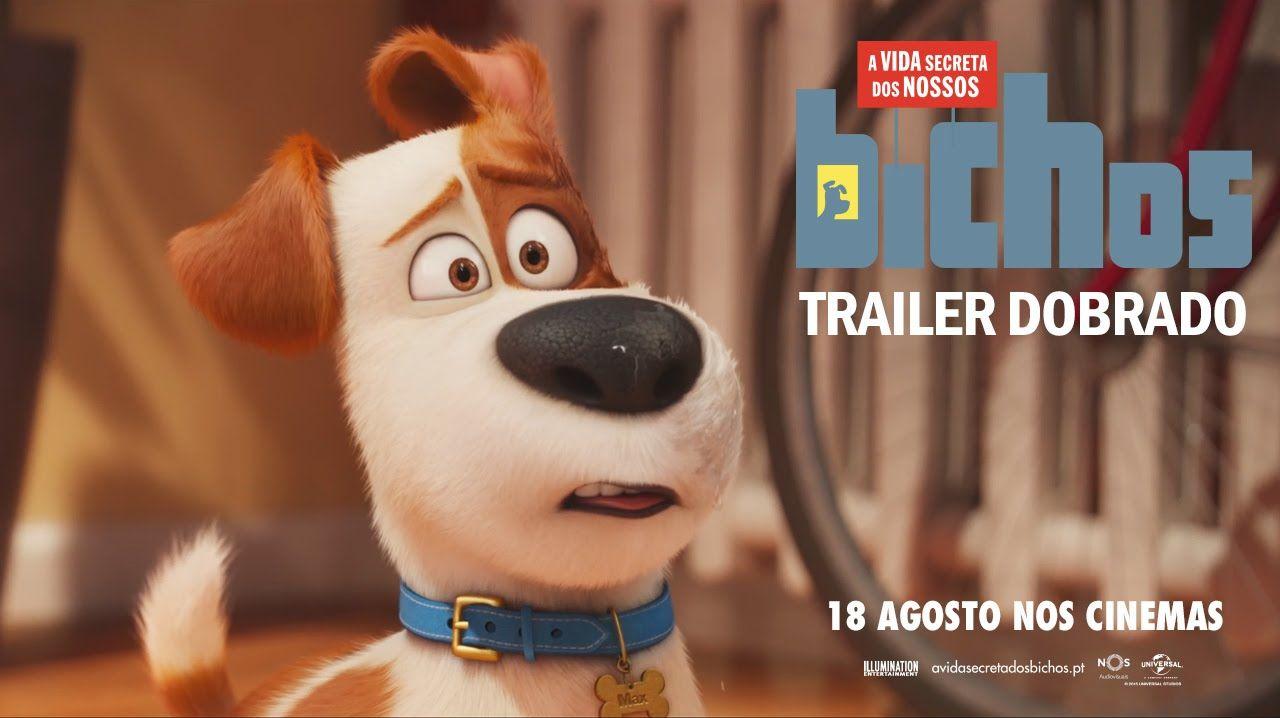 A Vida Secreta Dos Nossos Bichos Trailer 2 Oficial Dobrado