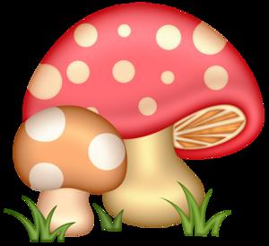 ccd_mushrooms.png