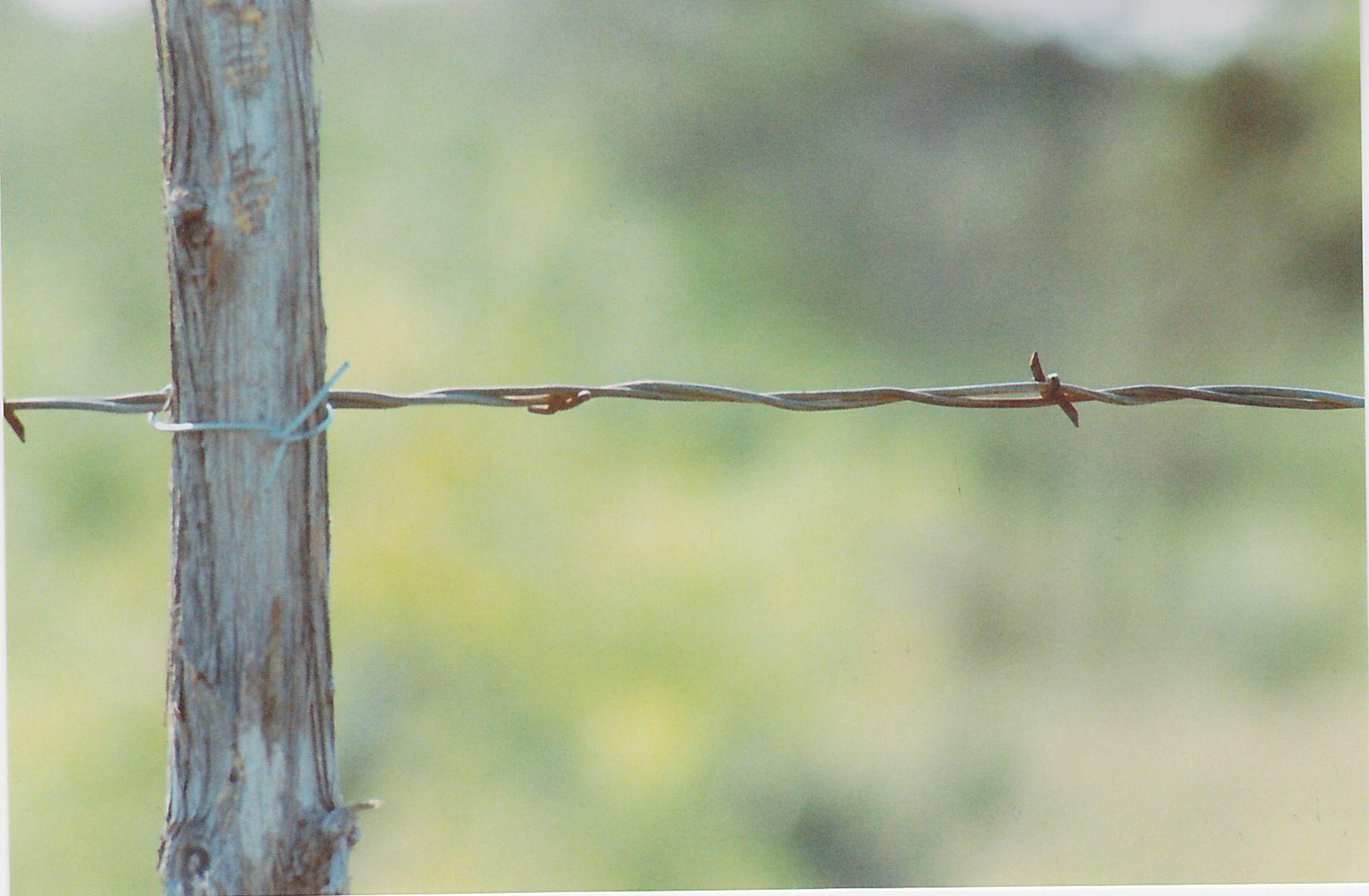 by chris judice  fence