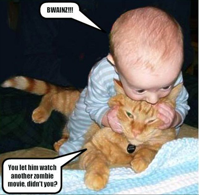 funny pictures with captions for kids | funny pictures ...