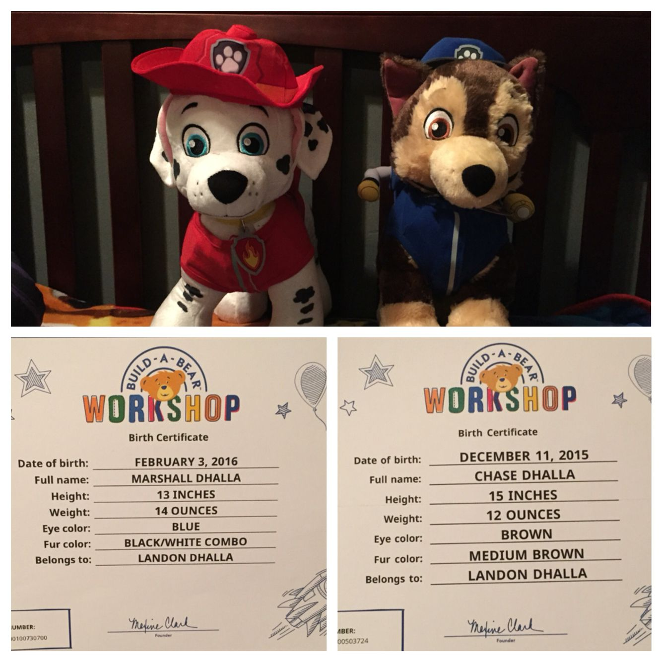 Marshall And Chase's Birth Certificates From Build A Bear
