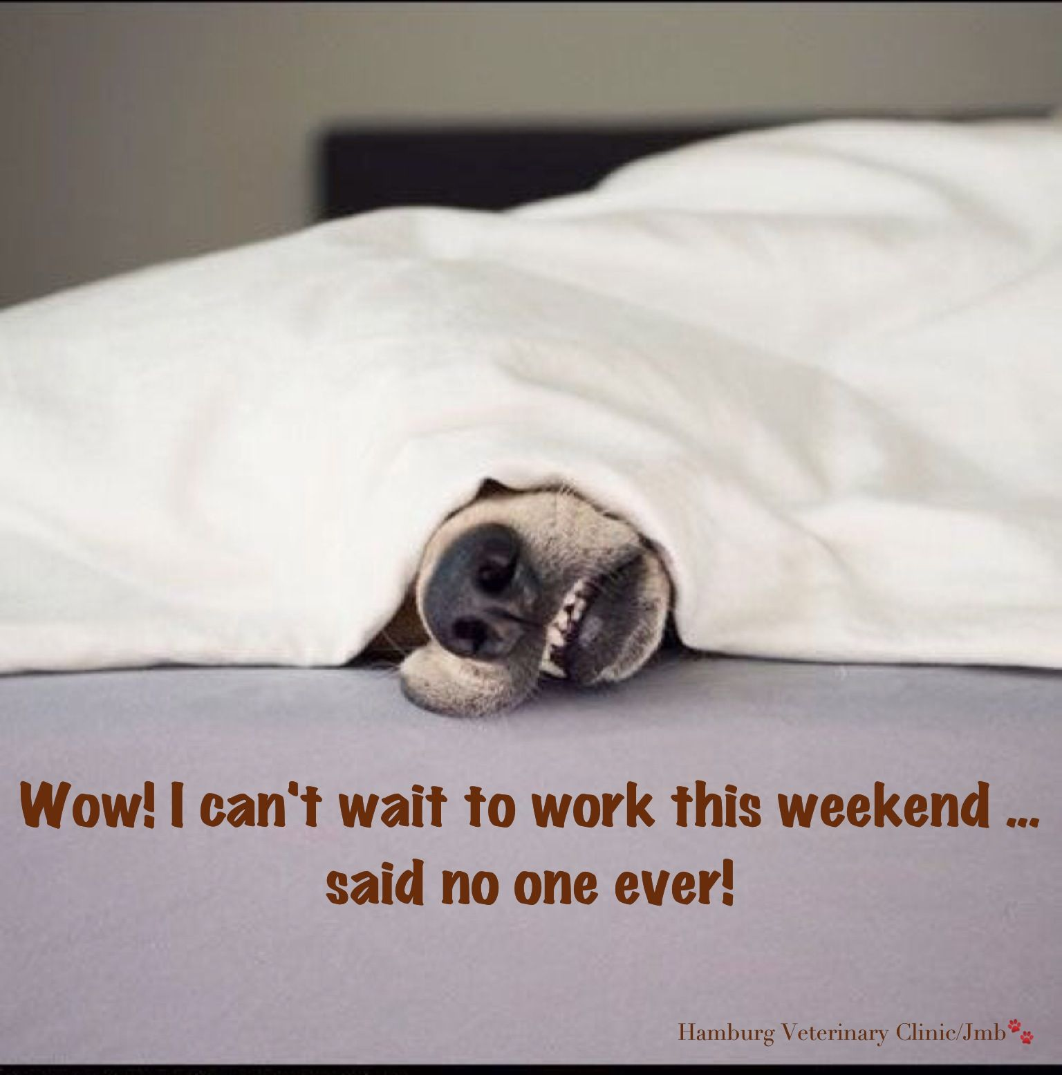 Working Weekends: It's finally the weekend. Hope you can enjoy it, however it may be spent!
