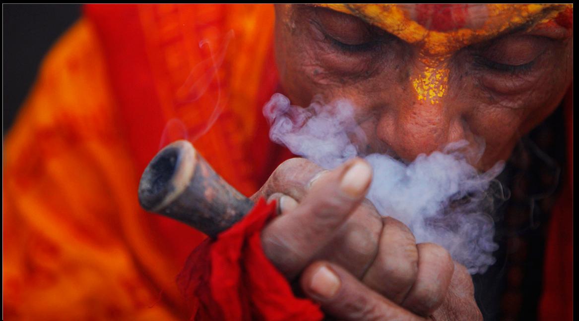 Чем вредное курение конопли свитшот с марихуаной купить украина