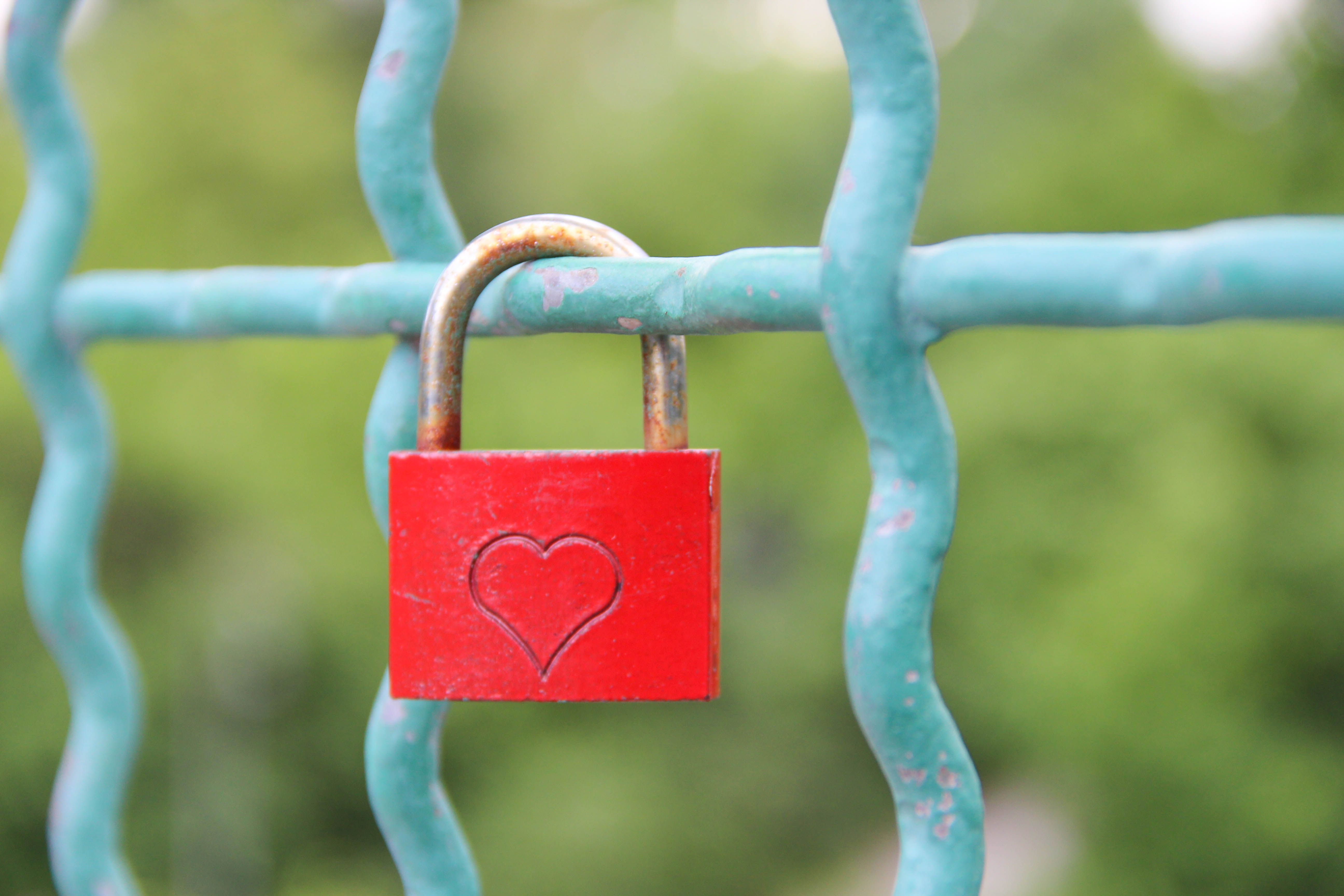 Locks of love - Grosser Teirgarten.