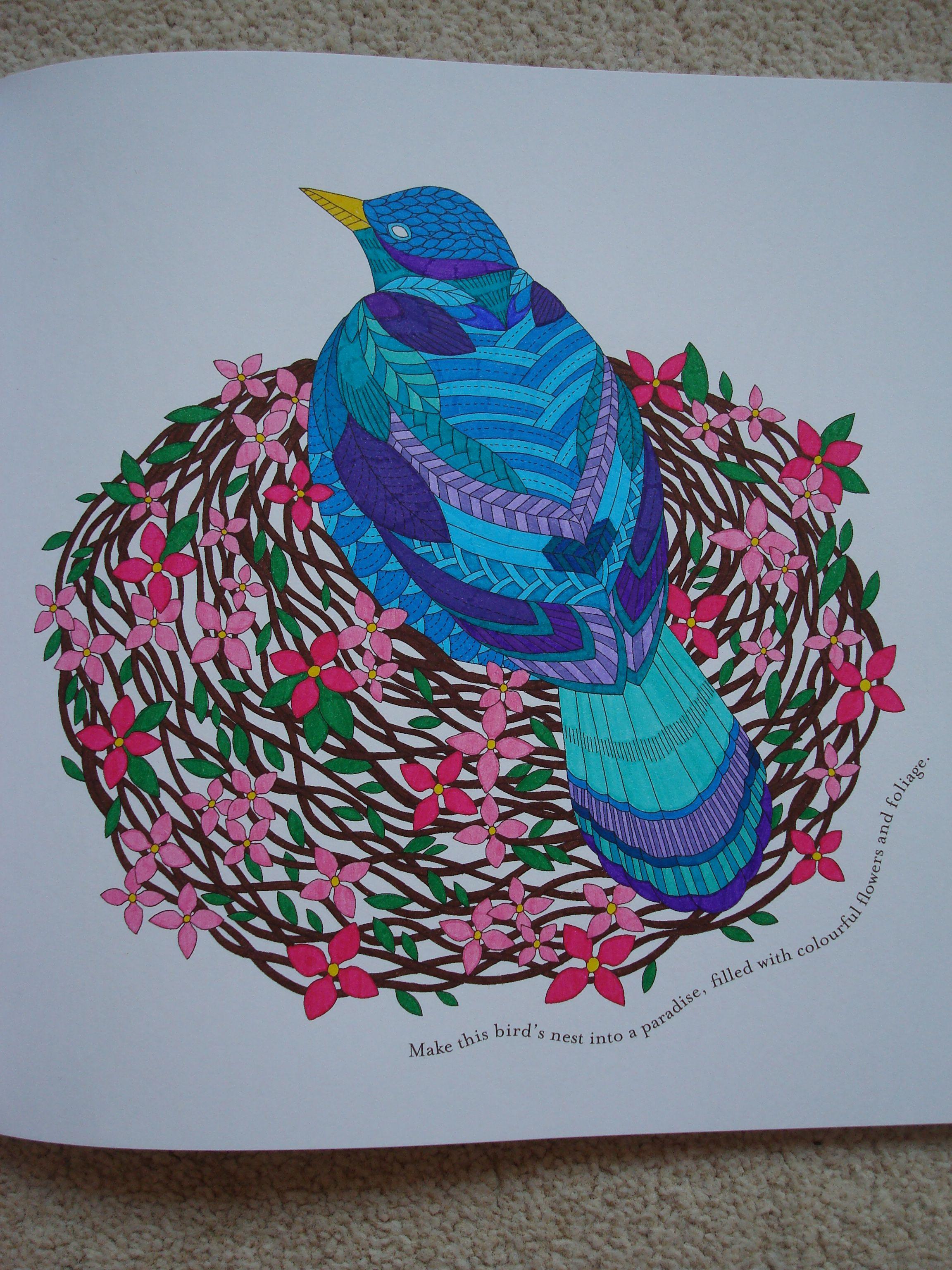 Tropical Wonderland 045 | Millie Marotta.1 | Pinterest | Coloring ...