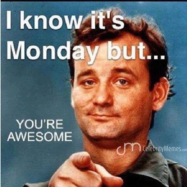 91a7b670a7eb3a69128a95905e4837f0 bill murray you stud! happy monday y'all! monday meme