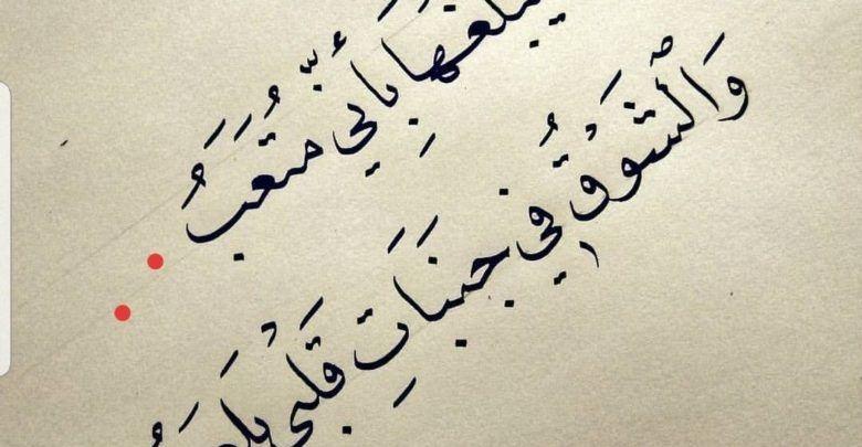 عبارات جميلة معبرة عن الحب والعشق والغرام Calligraphy Arabic Calligraphy