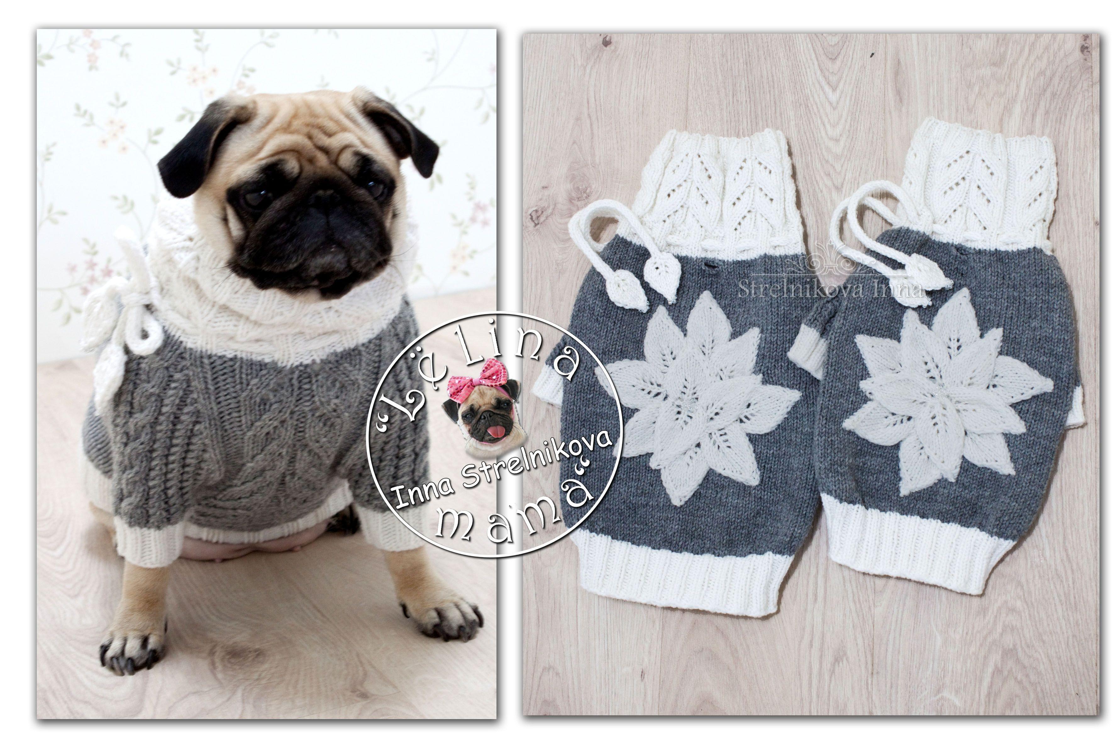 Pin de Mary en Собачка | Pinterest | Ropa para perros, Perros y Mascotas