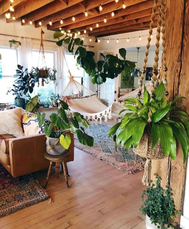 Plant home decor