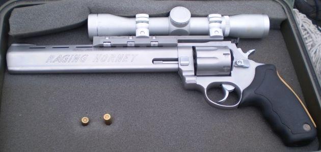 Taurus Raging Hornet  22 Hornet | gun | Guns, Hand guns, Revolver
