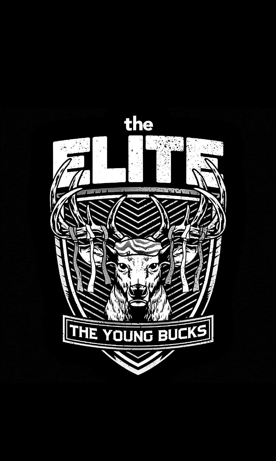 Pin By 란스 Lance On Wwe Njpw Young Bucks Professional Wrestling