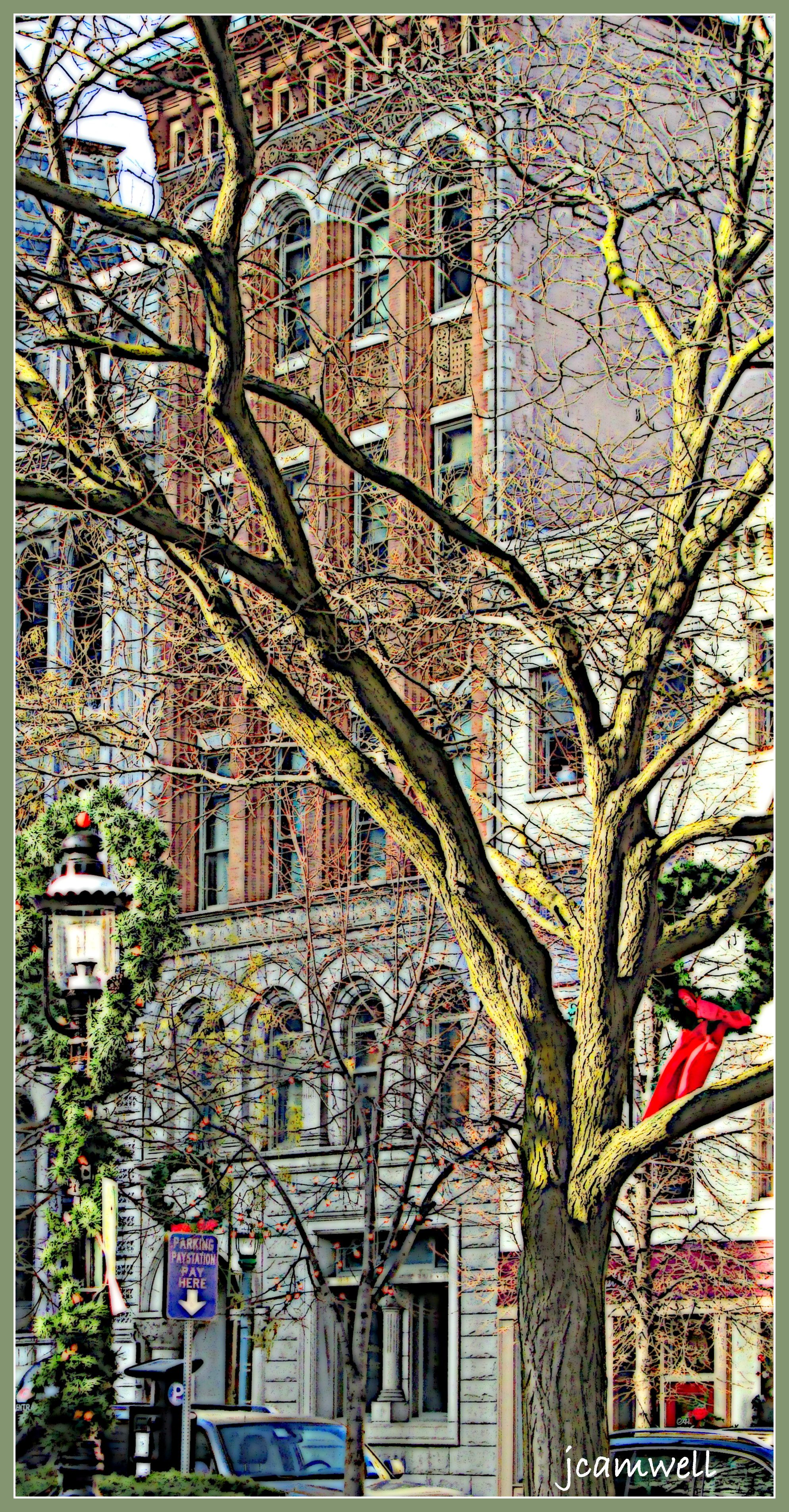Hanover Square, Syracuse, NY at Christmas time ♥ Upstate