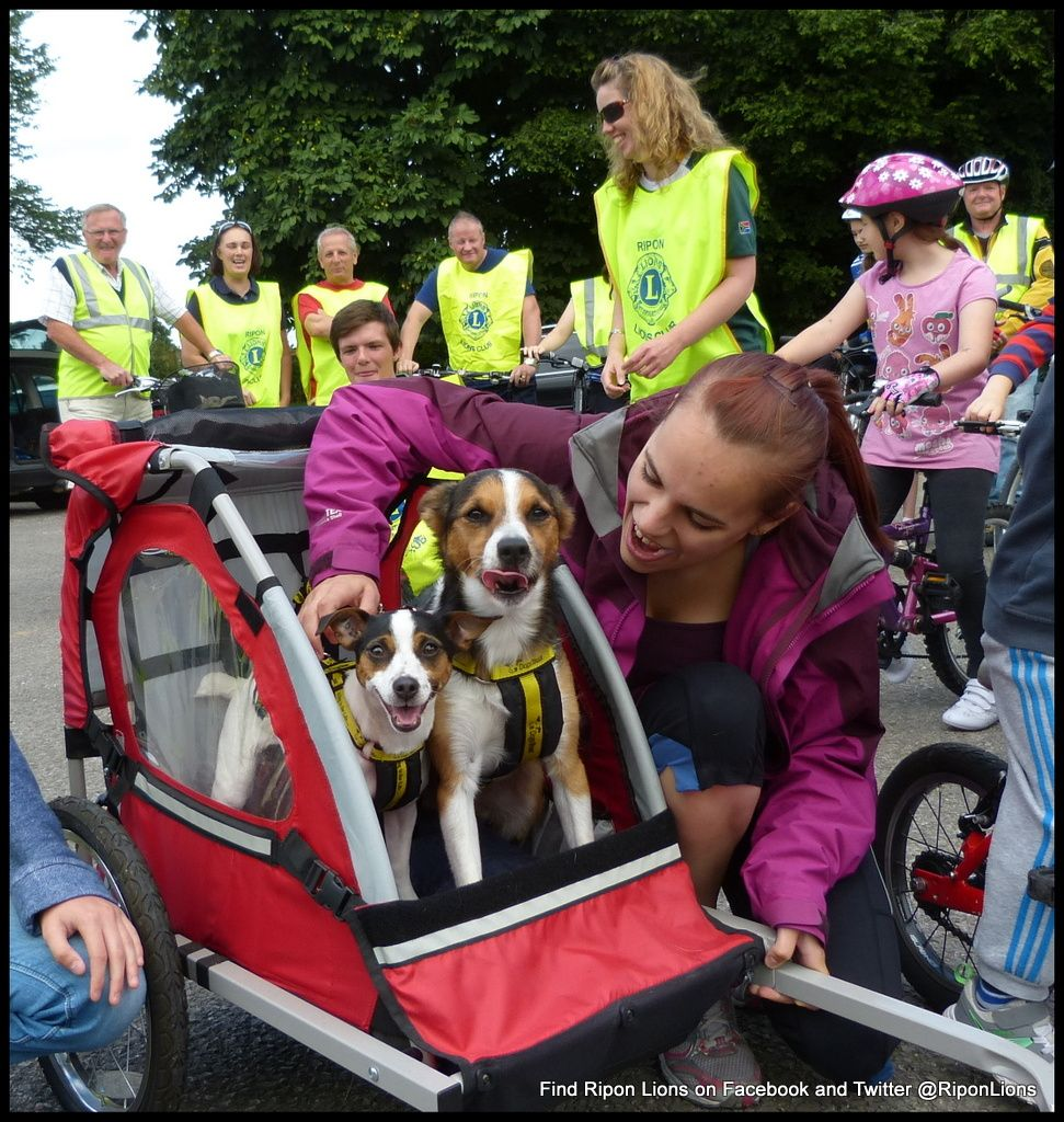 Cycle ride Dog stroller, Cycle ride, Large dogs