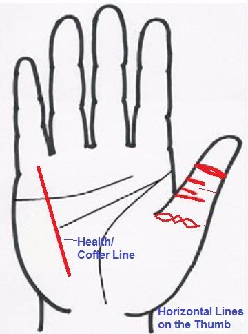 horizontal lines of the thumb | Xiaoming's Goodwill Feng