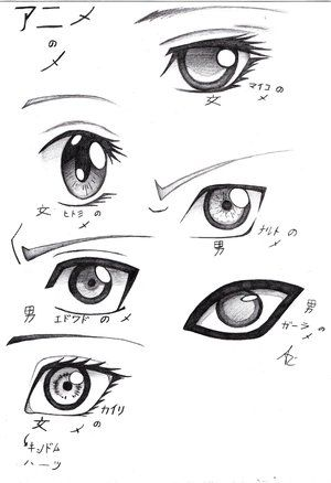 I like the top and bottom eyes