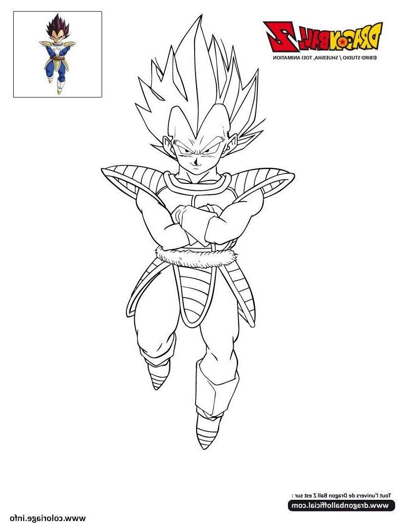 15 Animé Coloriage Dragon Ball Z Vegeto Stock   Coloriage ...