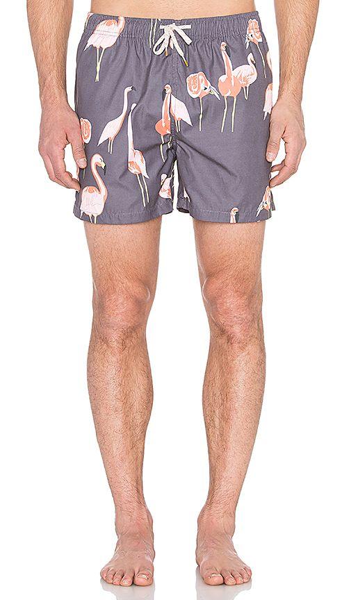 Shop for Ambsn Mingo Boardshort in Coal at REVOLVE. Flamingo mens swim shorts.