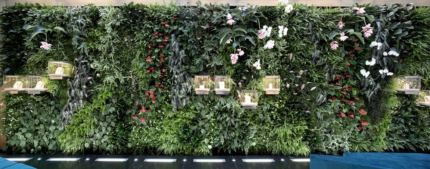 Giardino verticale - Bulgari - Milano  Vertical Gardens  Pinterest