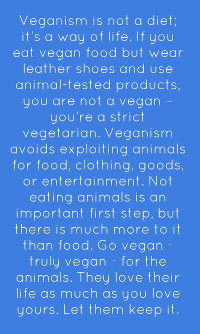 I love this so much it brought tears to my eyes. Go vegan <3