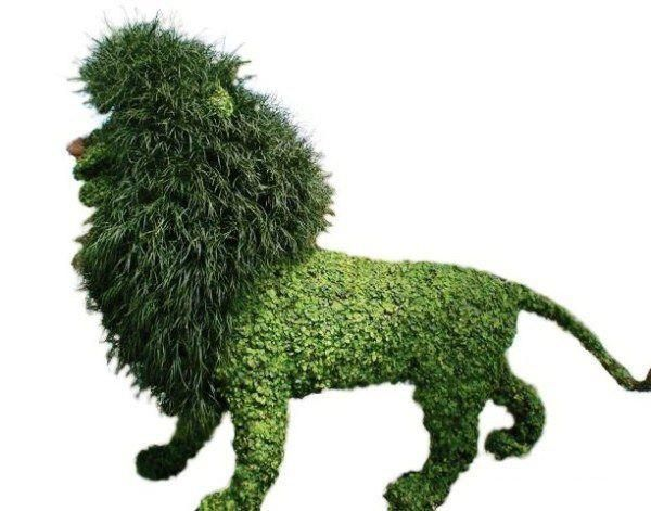 lion made of creative hedges