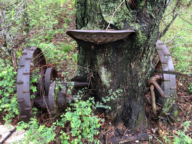Print Tractor Grown Into Tree Bird Bath Farm Equipment Outdoor Decor