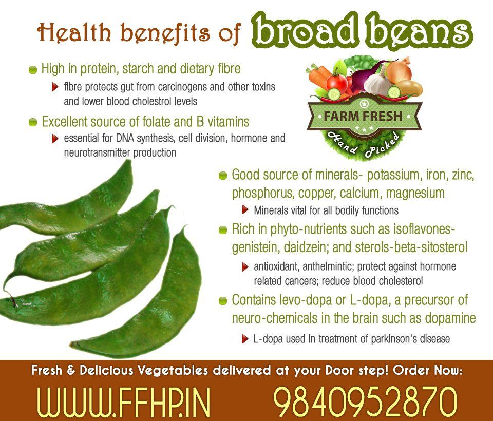 Farmfresh Vegetables: Health Benefits Of Broad Beans!