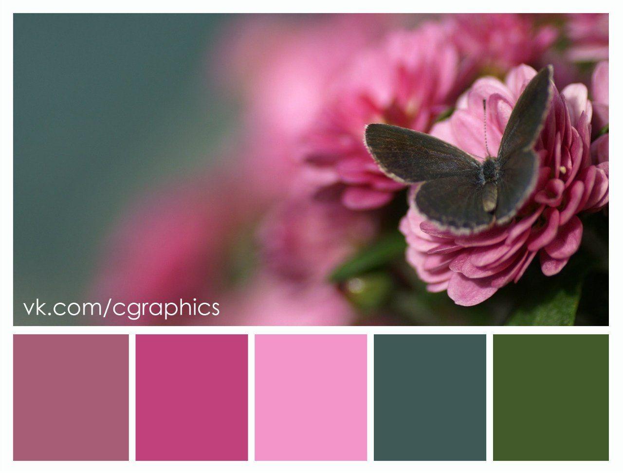 httpsppvkmec629412v6294126461a160OjxuYxmjLgjpg my love color scheme