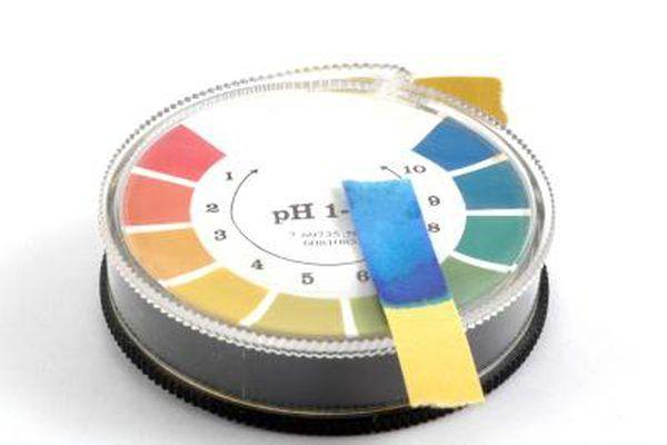 pH level testing paper.