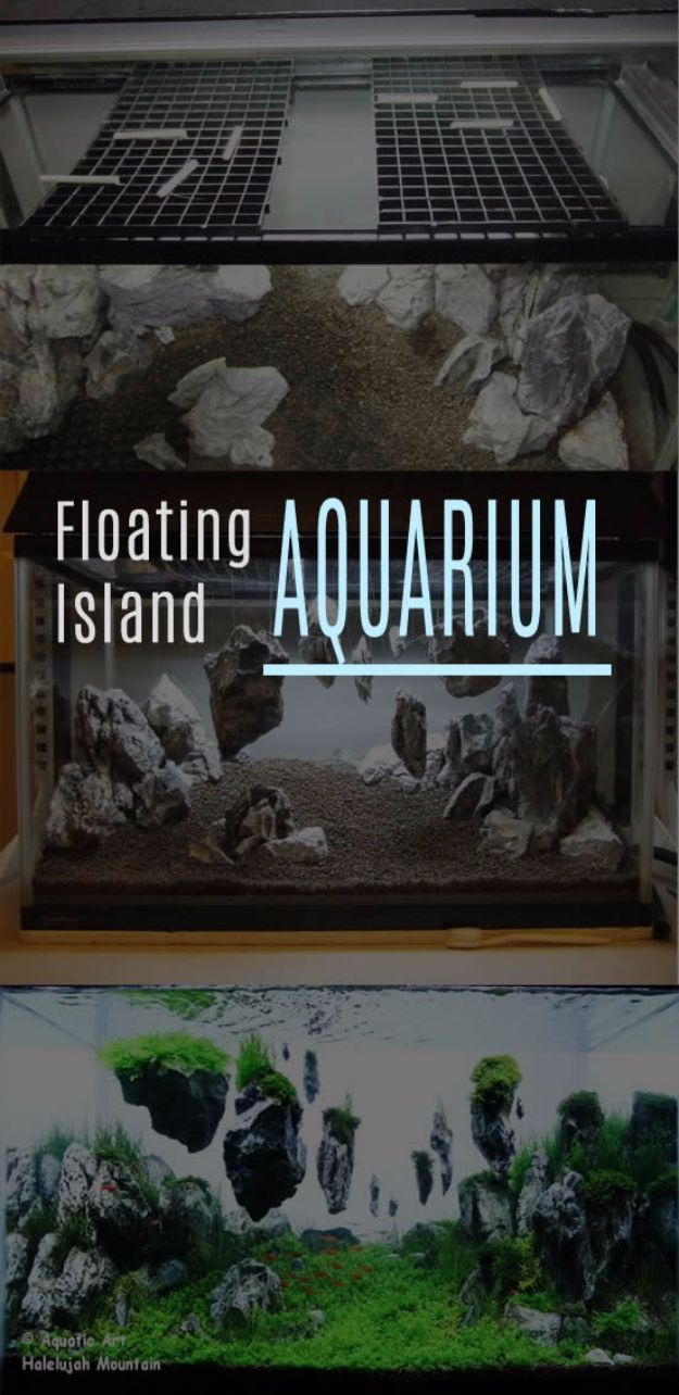 brilliantly creative diy aquariums gotta do pinterest